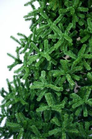 Brad Babbo Natale 360 cm verde2