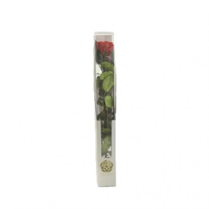 Trandafir  lux 50cm [1]