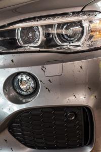 Solutie indepartare resturi insecte, Autoland, 750 ml2