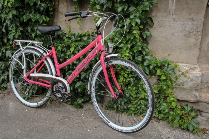 Bicicleta Adriatica Boxter HP 21V Donna 0