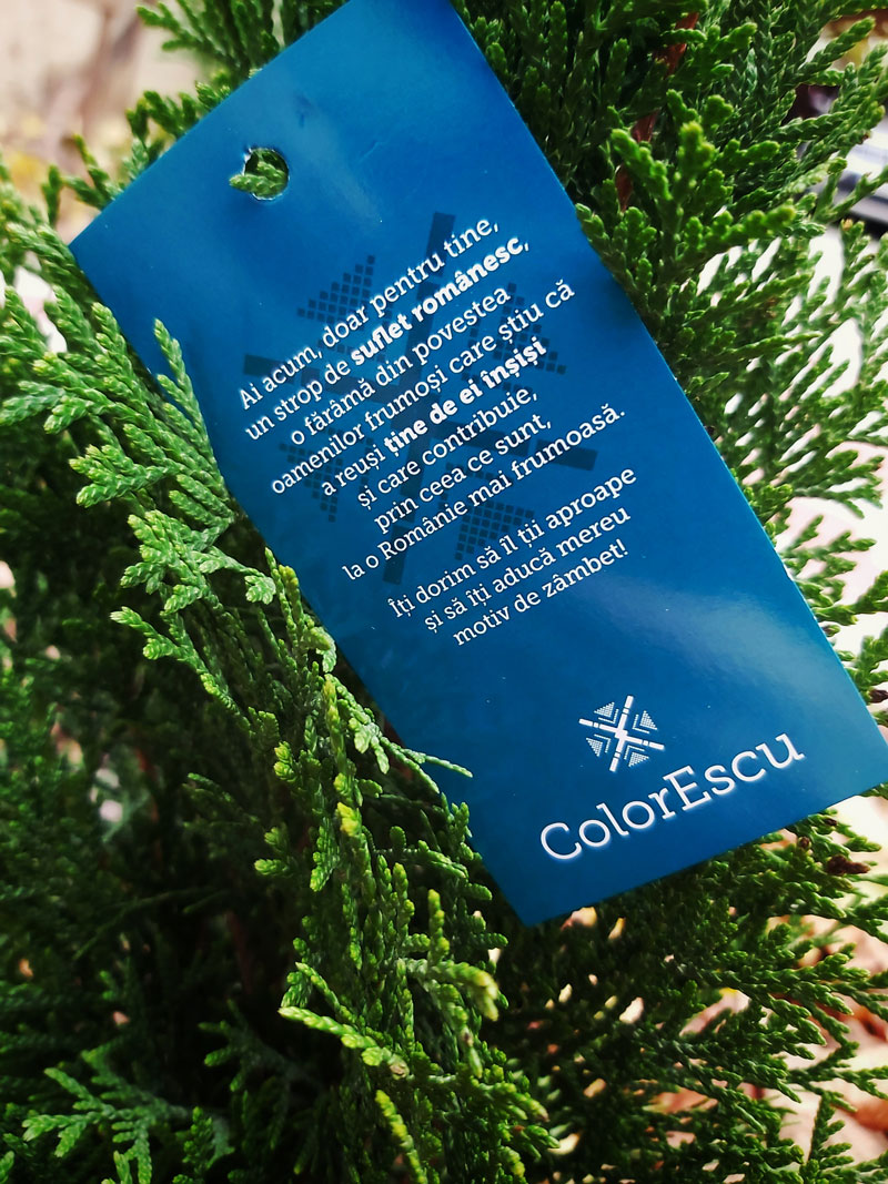 Eticheta albastra ColorEscu