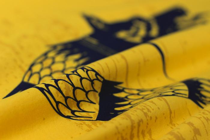 Tricou Lupul Dacic, galben, bărbat 2