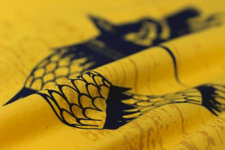 Tricou Lupul Dacic, galben, damă2