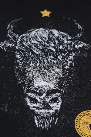 Tricou Zimbru de România, culoare neagră2
