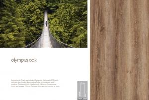 Parchet 8mm Olympos Oak1