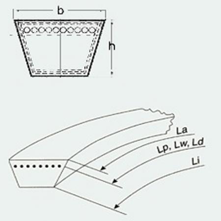 Curea trapezoidala Rubena 17x1100 Li [1]
