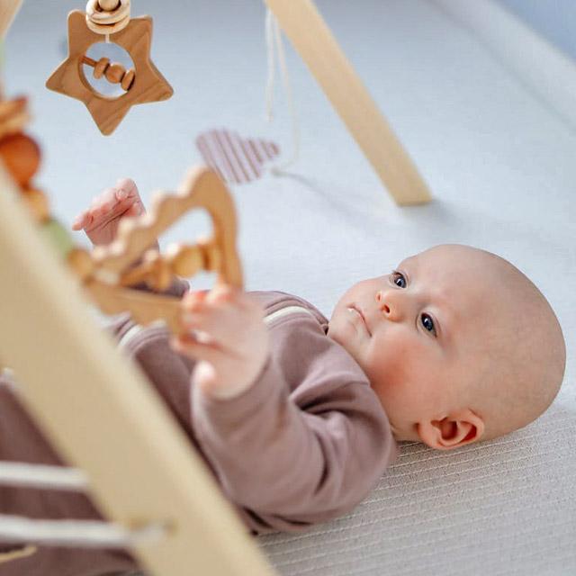 Jucării bebe