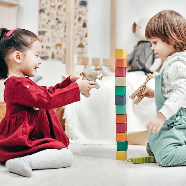 Jucării constructive