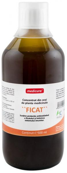 Concentrat din plante medicinale pentru ficat, 500 ml Medicura [0]