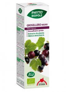Extract BIO de coacaz negru, 50 ml Phyto-Biople [1]