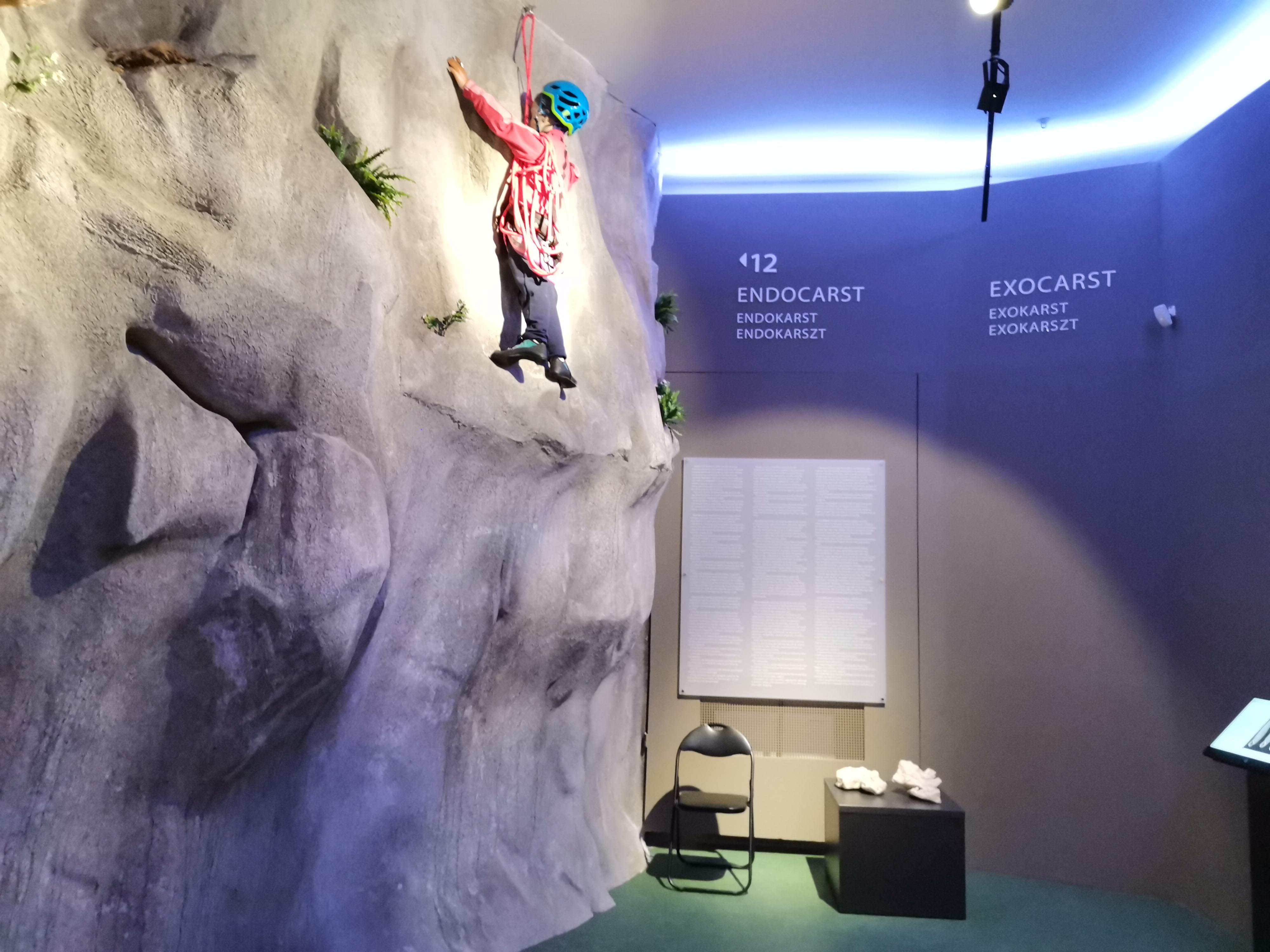 Galerie imagini