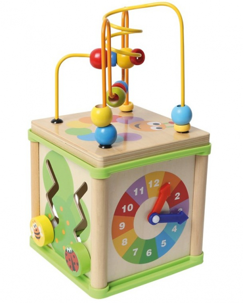 Cub Educativ Insecte 5 in 1 0