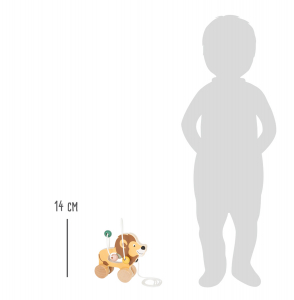 Jucarie de tras si motricitate Leu, 2 in 1 [2]
