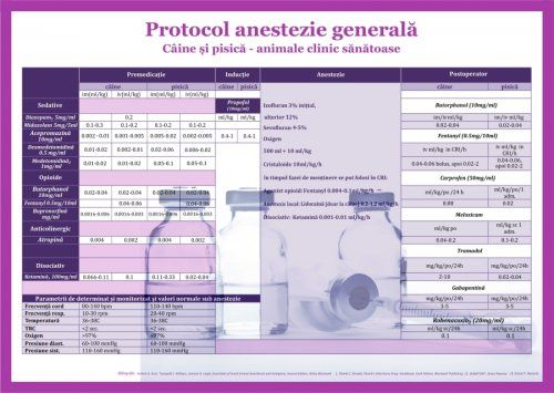 Plansa Protocol anestezie generala 50 x 70 cm [0]
