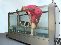 Cada pentru hidroterapie pentru animale, H-2000 1