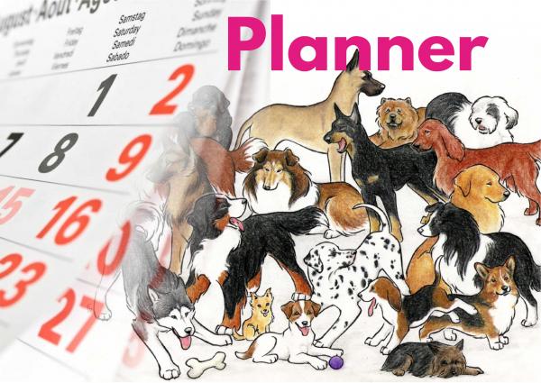 Planner saptamanal A3 [0]