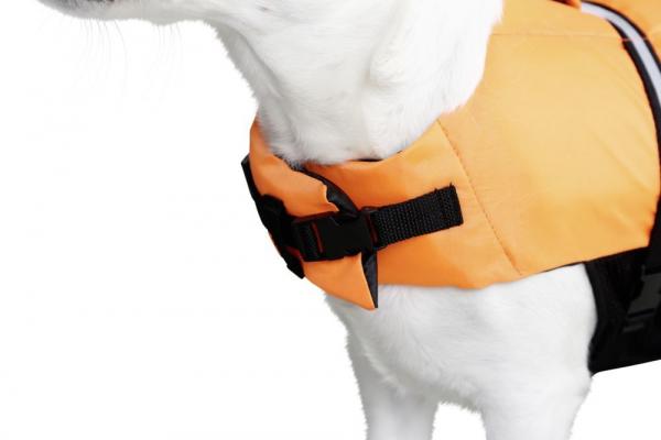 Vesta de salvare pentru caini, max.32 kg 5