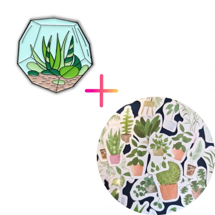 Set Aloe Bowl [0]