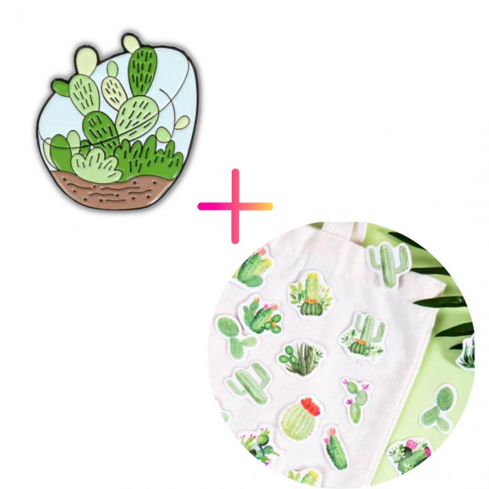 Set Cactus [0]