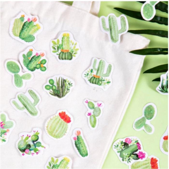 Set Cactus [3]