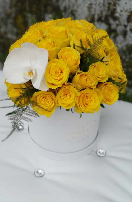 Cutie alba cu 31 trandafiri galbeni 1
