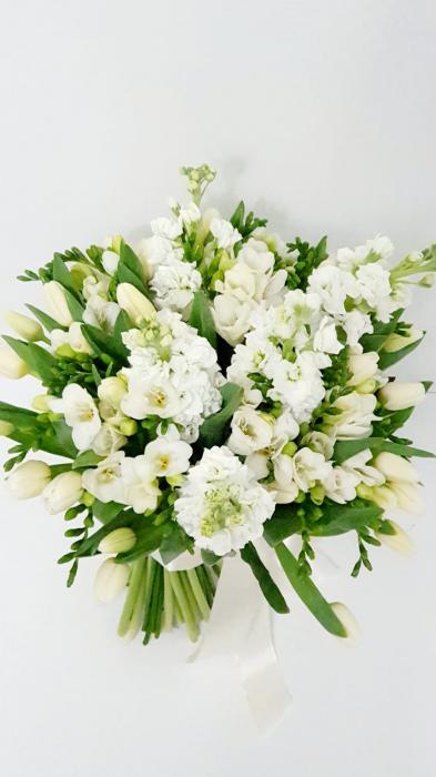 Flori 8 martie Iasi 0