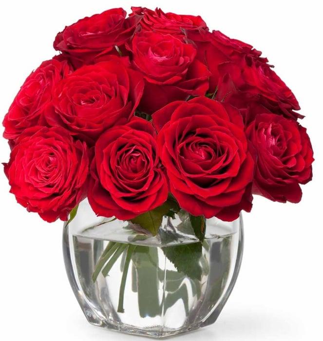 Bol 15 trandafiri rosii 0