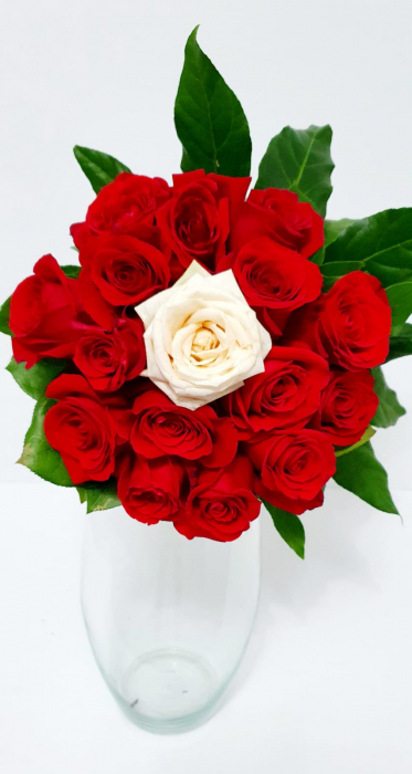 Buchet trandafiri rosii si unul alb [0]