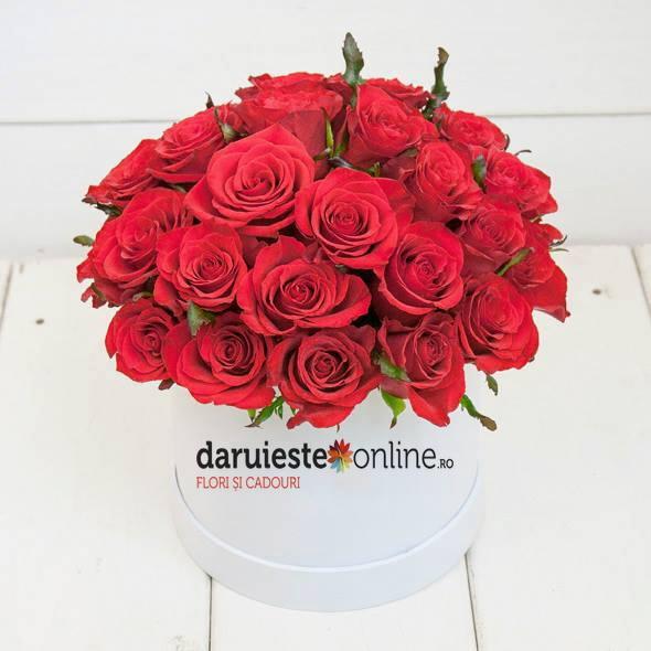 Cutie 41 trandafiri 0