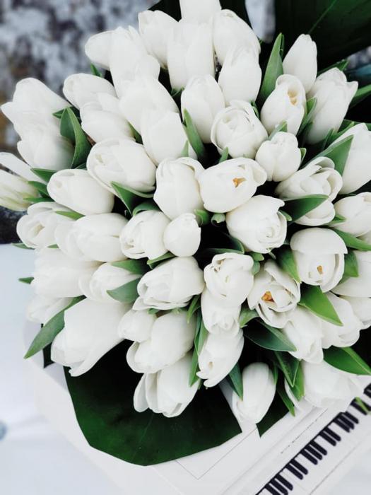 Buchet lalele albe 2