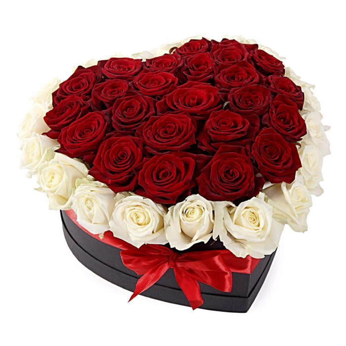 Florarie Iasi cutie 49 trandafiri albi si rosii 0