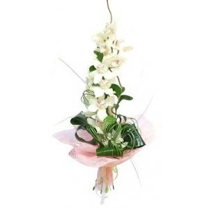 Buchet orhidee imperiala [0]