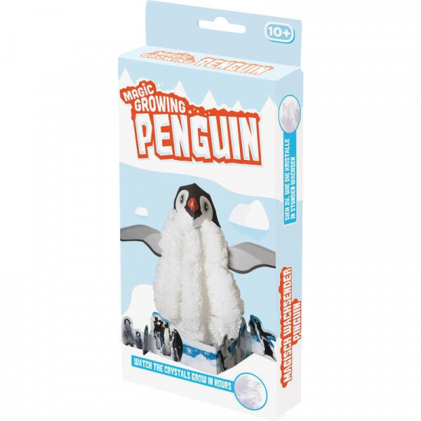 Set experimente - Pinguin 1