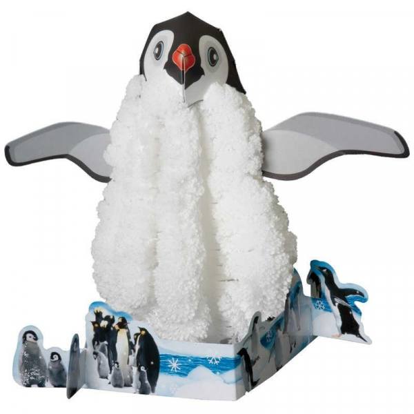 Set experimente - Pinguin 0
