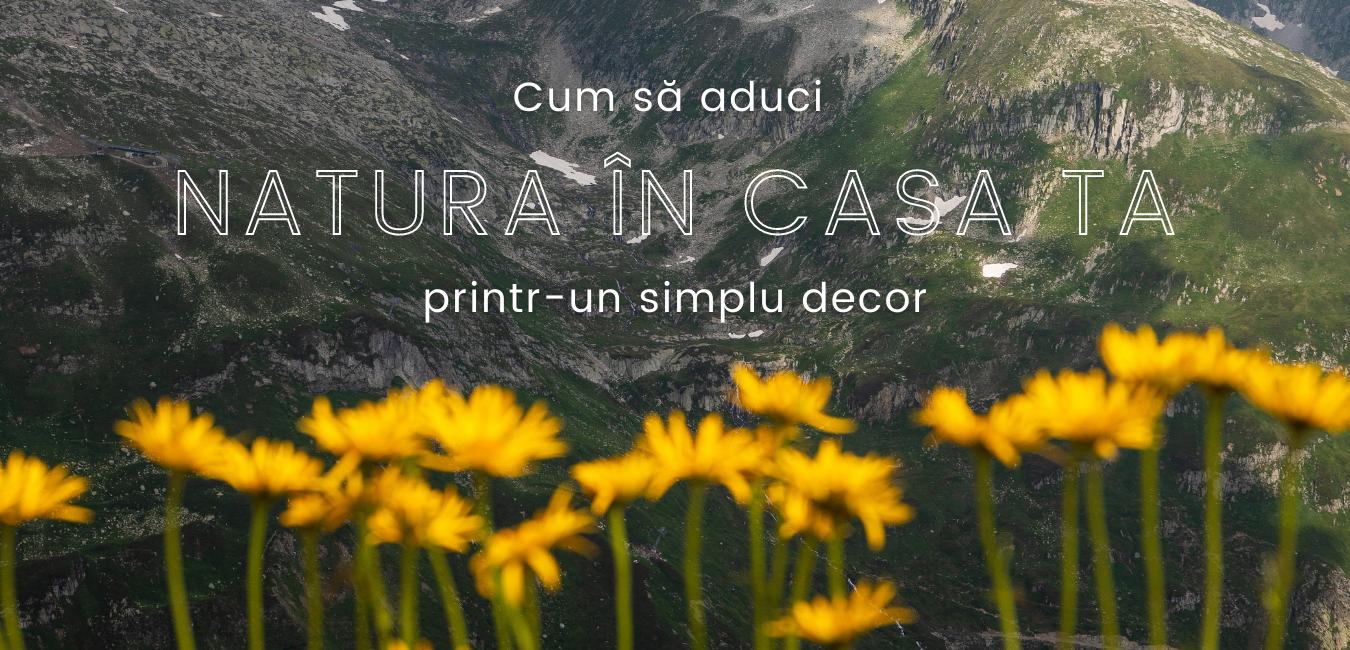 Cum să aduci natura în casa ta printr-un simplu decor