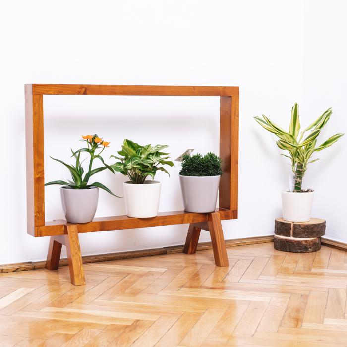 Suport din lemn masiv pentru flori, tip ramă [3]