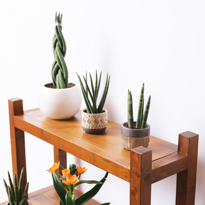 Suport supraetajat pentru flori, lemn masiv [4]