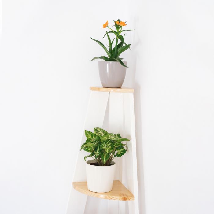 Suport supraetajat pentru plante, așezare pe colț [4]