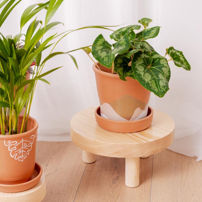 Set 3 suporturi pentru plante, lemn masiv de pin [3]