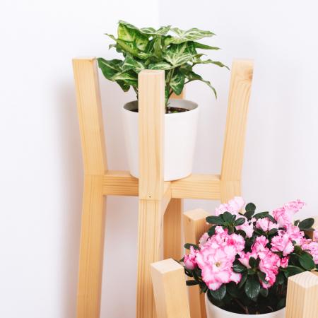 Set suporturi pentru flori din lemn masiv, tip stâlpi [4]