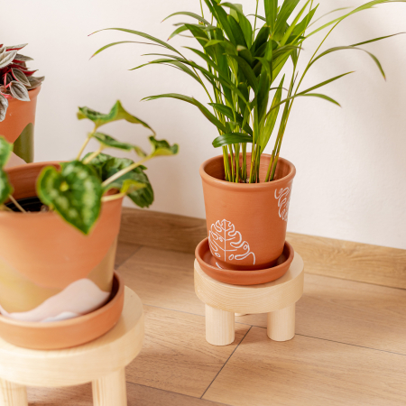 Set 3 suporturi pentru plante, lemn masiv de pin [4]