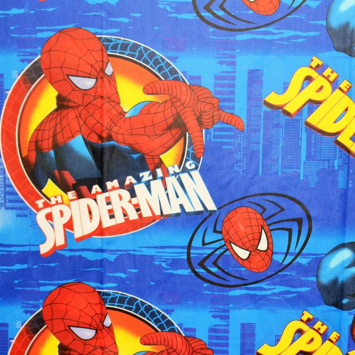 Ranforce Spiderman [1]