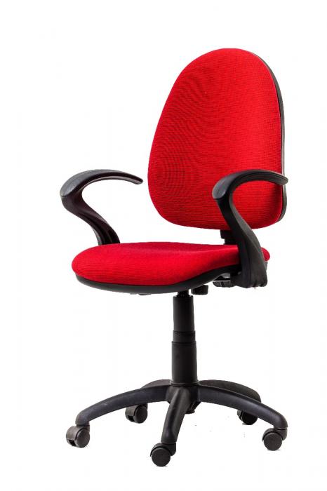 Scaun de birou ergonomic PANTHER 1