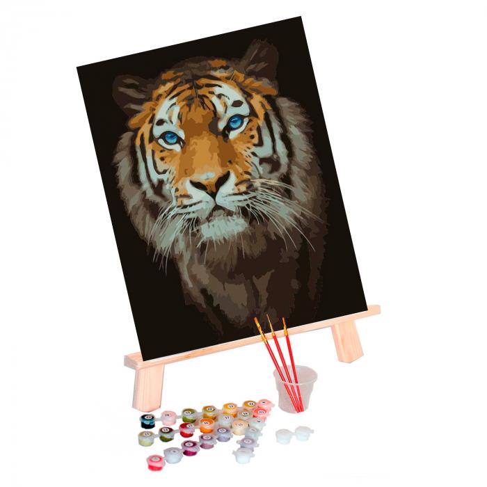 Set pictura pe numere, cu sasiu, Tigru 1
