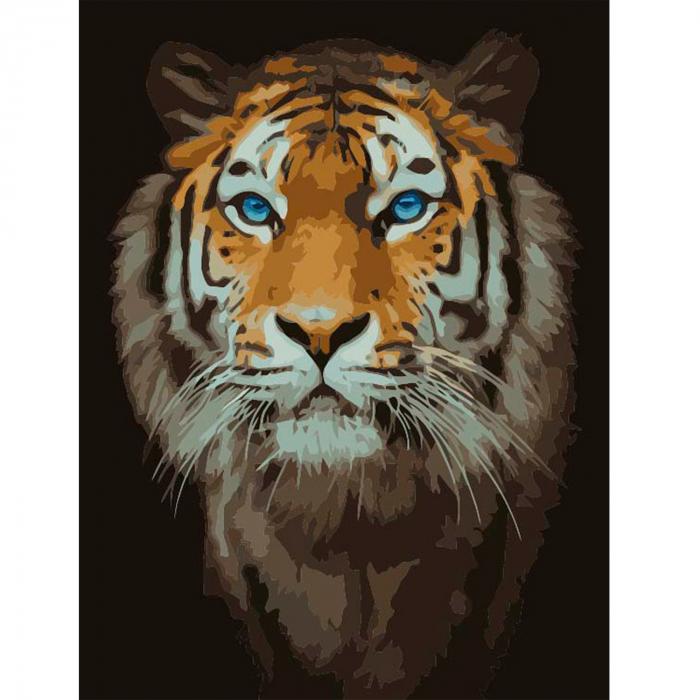 Set pictura pe numere, cu sasiu, Tigru 0