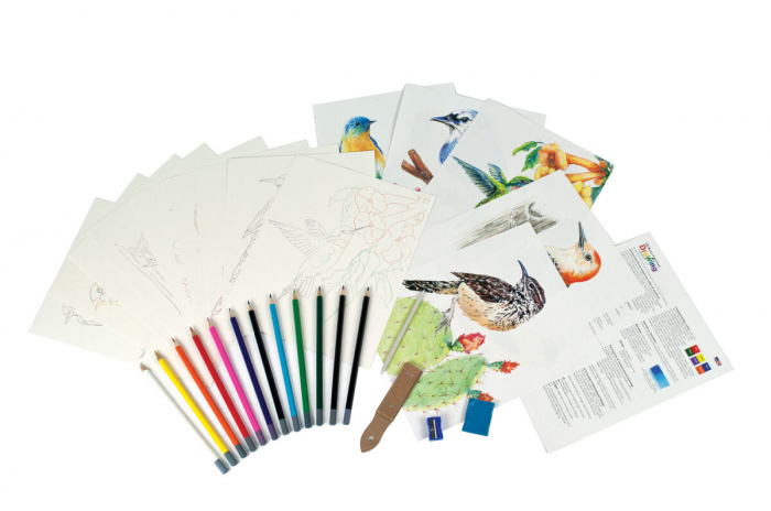 Set desen creioane colorate si planse, Pasari 1