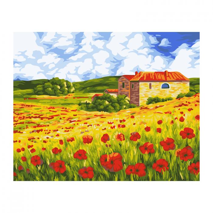 Set pictura pe numere, cu sasiu, Camp cu maci, 40x50 cm 0