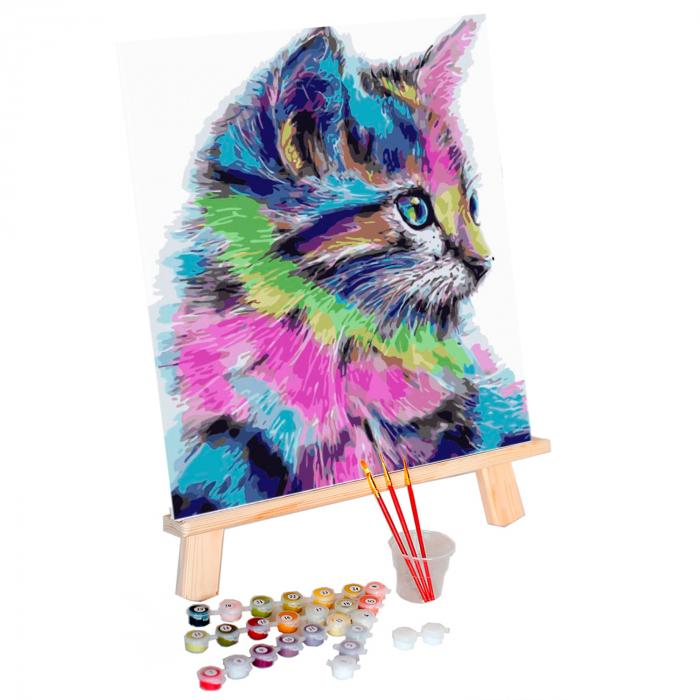 Pictura pe numere, cu sasiu, Colourful Kitten [1]