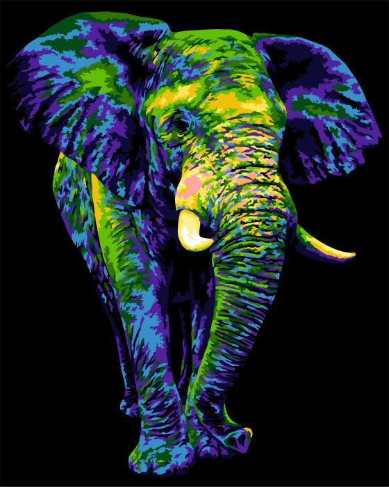 Pictura pe numere, cu sasiu, Elefant misterios [0]
