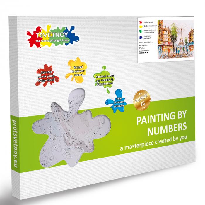 Pictura pe Numere, cu sasiu, Impresie din Paris, 40x50 6